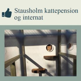 kattepension_partner