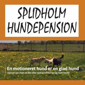 splidholm_partner